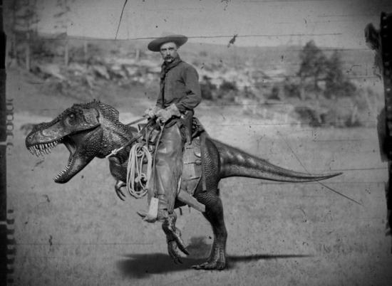 Velociraptor pony